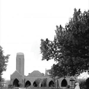 Wedding in the Ash Garden of Remembrance of Croydon Cemetery